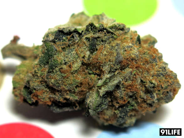 Cookies and Cream from San Francisco Dispensary Med Men Wellness